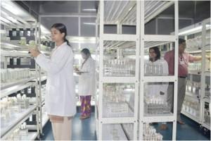 Tissue-Culture-Laboratory