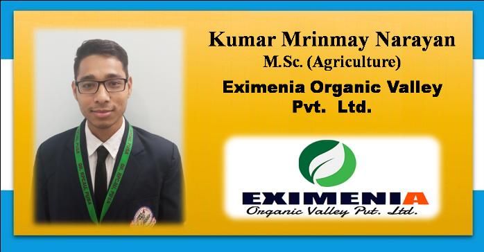 Eximenia -07